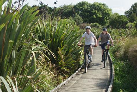 A Cyclist's Paradise